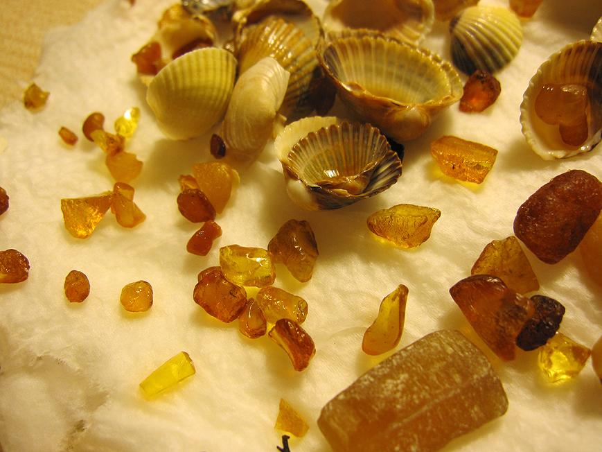 Bursztyny z Sopockiej plaży. Ambers from the Sopot Beach. Foto 2.