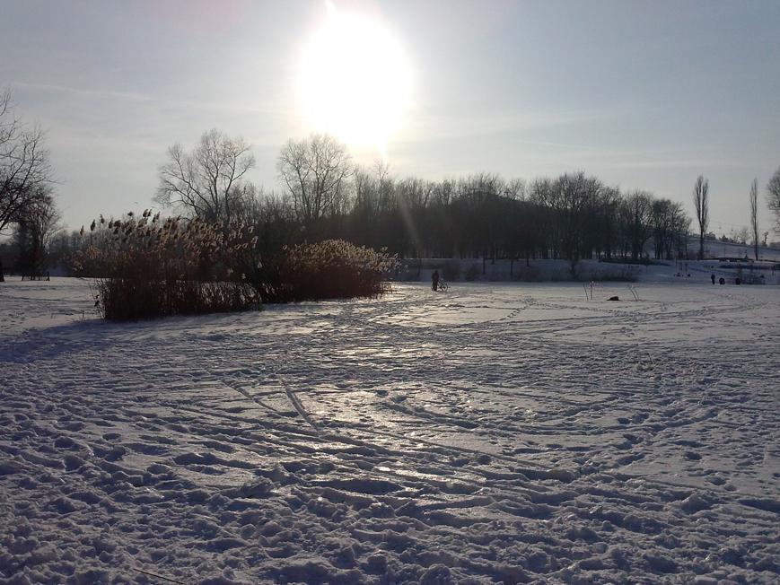 park_szczesliwice_03_02_2014_foto_01